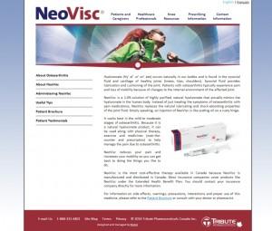 NeoVisc_internal